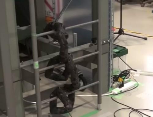 حرکات جالب مار رباتیک برای بالا رفتن از نردبان [تماشا کنید]
